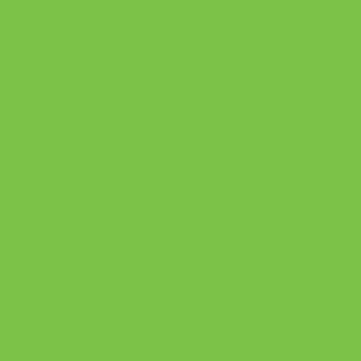 Koi Coloring Brush Pen Fırça Uçlu Kalem Emerald Green