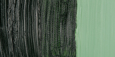Maimeri Classico 60ml Yağlı Boya 358 Sap Green - 358 Sap Green