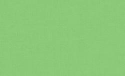 Pebeo - Pebeo Setacolor Opak Kumaş Boyası 24 Spring Green