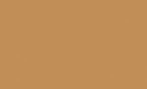 Pebeo Setacolor Opak Kumaş Boyası 25 Sienna - 25 Sienna