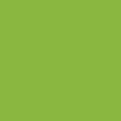 Pentel Arts Colour Brush Fırça Uçlu Kalem Light Green