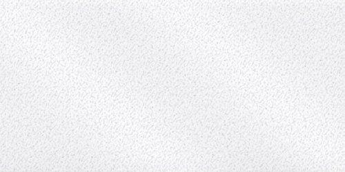 Premo Accents Polimer Kil 57g 5057 Frost White Glitter