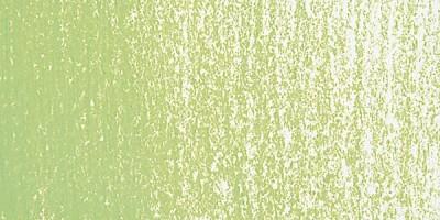 Rembrandt Soft Pastel Boya Olive Green 620.8