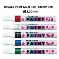 Sakura - Sakura Paint Alkol Bazlı Kalem Seti 5li 2,00mm