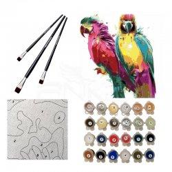 Anka Art - Sayılarla Boyama Seti 40x50cm Papağan