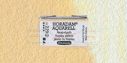 Schmincke - Schmincke Horadam Aquarell 1/1 Tablet 229 Naples Yellow seri 2