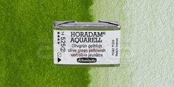 Schmincke - Schmincke Horadam Aquarell 1/1 Tablet 525 Olive Green Yellowish seri 2