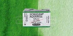 Schmincke - Schmincke Horadam Aquarell 1/1 Tablet 530 Sap Green seri 2