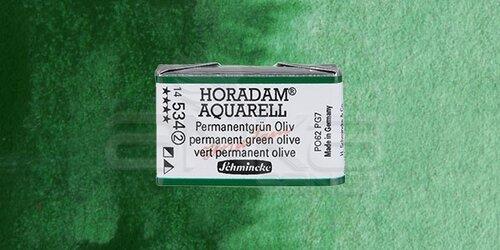 Schmincke Horadam Aquarell 1/1 Tablet 534 Permanent Green Olive seri 2 - 534 Permanent Green Olive