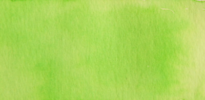 Talens Ecoline 30ml Pastel Green No:666