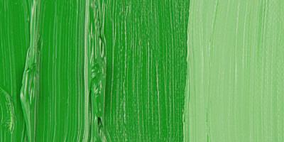 Van Gogh 40ml Yağlı Boya Seri:1 No:614 Perm Green - 614 Perm Green