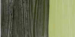 Van Gogh - Van Gogh 40ml Yağlı Boya Seri:2 No:620 Olive Green