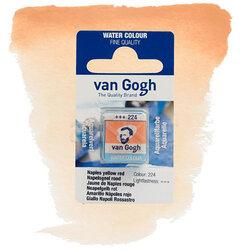 Van Gogh - Van Gogh Tablet Sulu Boya Yedek Naples Yellow Red 224