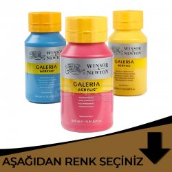 Galeria - Winsor&Newton Galeria Akrilik Boya 500ml Kahverengi Tonlar