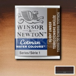 Winsor&Newton - Winsor & Newton Tablet Sulu Boya No:076 Burnt Umber