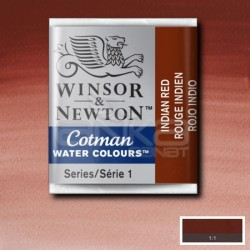 Winsor&Newton - Winsor & Newton Tablet Sulu Boya No:317 İndian Red