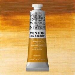 Winsor&Newton - Winsor&Newton Winton Yağlı Boya 37ml 552 Raw Sienna