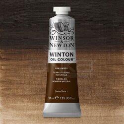 Winsor&Newton - Winsor&Newton Winton Yağlı Boya 37ml 554 Raw Umber