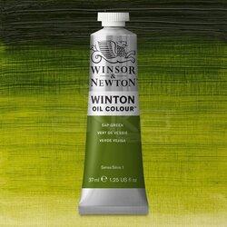 Winsor&Newton - Winsor&Newton Winton Yağlı Boya 37ml 599 Sap Green