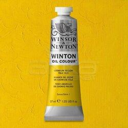 Winsor&Newton - Winsor&Newton Winton Yağlı Boya 37ml 119 Cadmium Yellow Pale Hue