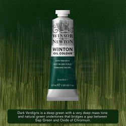 Winsor&Newton - Winsor&Newton Winton Yağlı Boya 37ml 405 Dark Verdigris
