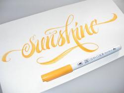 Zig Clean Color Real Brush Fırça Uçlu Marker Kalem - Thumbnail